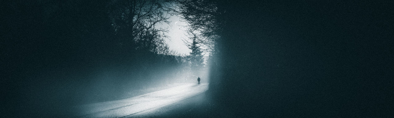 Tree Nature Mystery Plant Cold Temperature Night Spooky One Person Transportation Fear Dark Road Forest Outdoors Silhouette Winter Unrecognizable Person The Way Forward Fog
