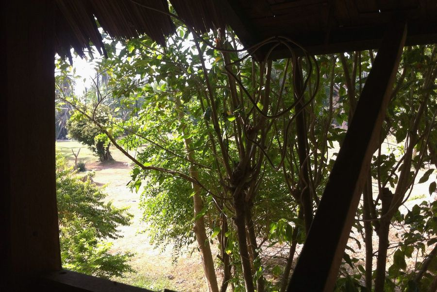 420'small bungalows Enjoying The Sun Koh Siboya Krabi Thailand Coffee And Cigarettes Relaxing Music Booking A Room Enjoying Life Photo