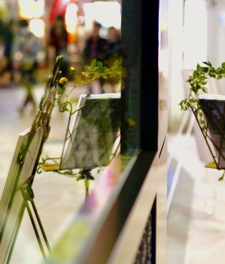 WINDOW DISPLAY WITH EASELS AND FLOWERS