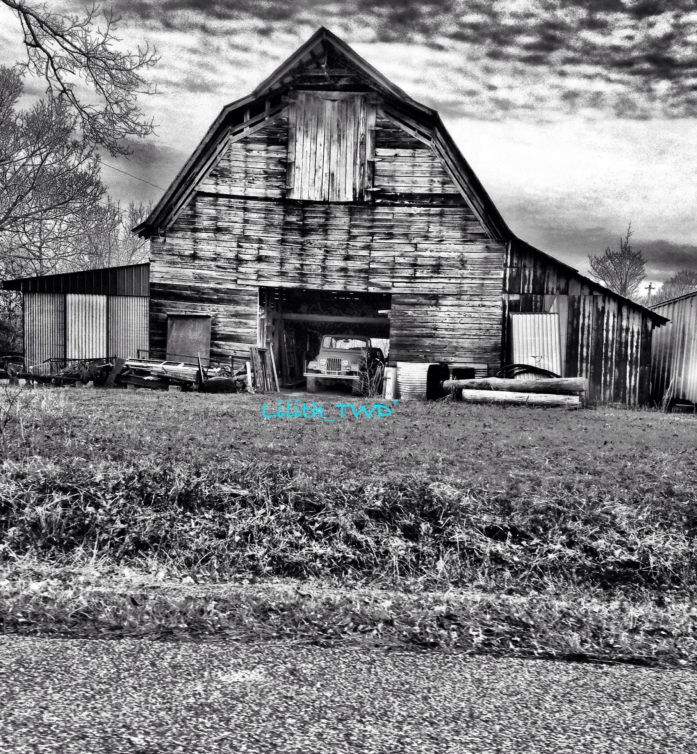 building exterior, architecture, built structure, house, residential structure, sky, abandoned, residential building, field, grass, barn, village, day, damaged, old, window, obsolete, rural scene, outdoors, no people