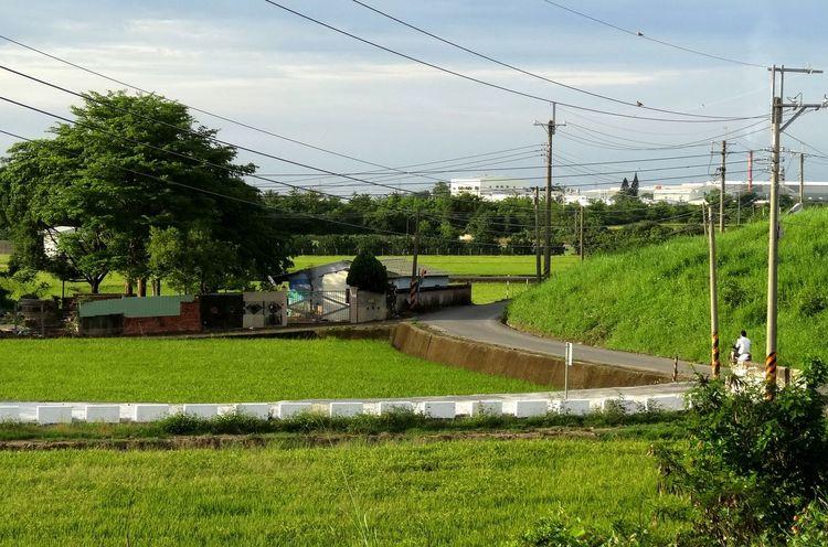 Landscape Farm Natural Green  Amazing Taiwan