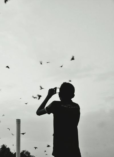 Boy photographing birds with mobile phone