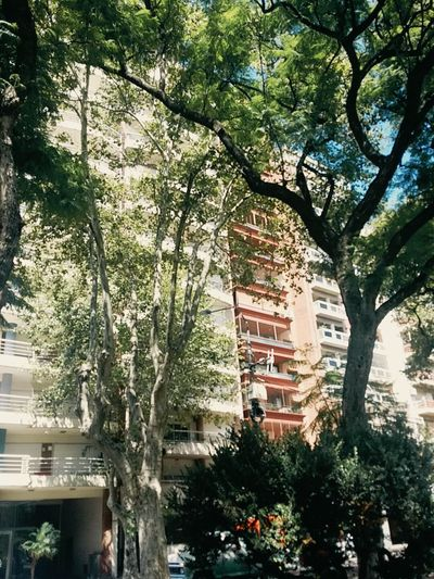 Edificio 🏢 Rosario Argentina