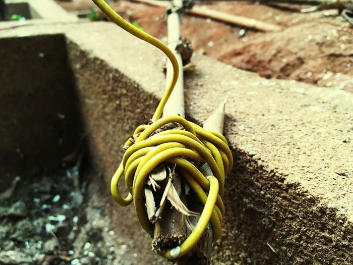 Mobilephotography Wire No People Outdoors Yellow
