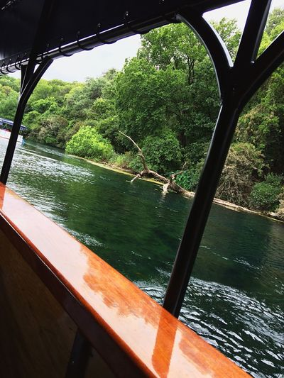 Glass Bottom Boat Clear Water Green Boat Tour Water Nature River Boat