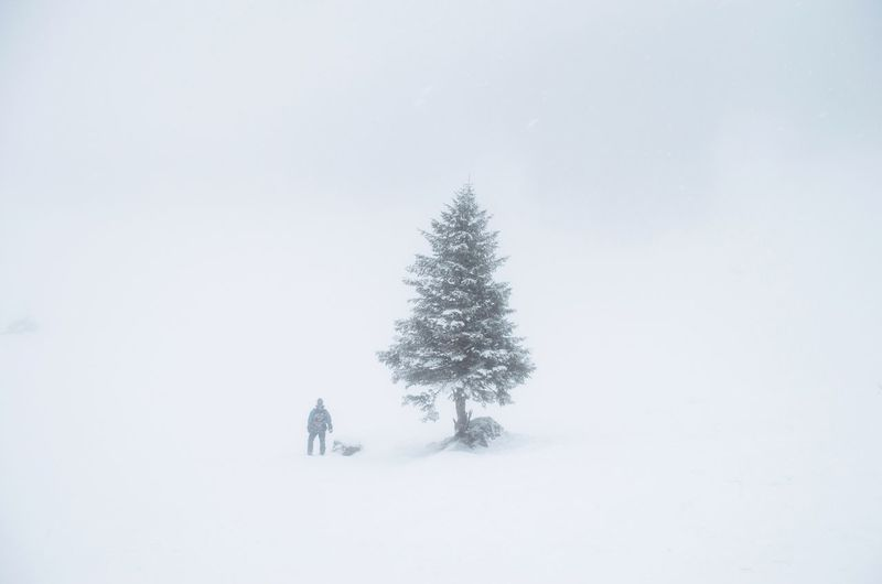 Lost... It's Cold Outside Adventure Buddies Snow Mist Tree White Adventure People Landscape Nature Outdoor Snowing Fog Misty Landscapes With WhiteWall The Great Outdoors - 2016 EyeEm Awards