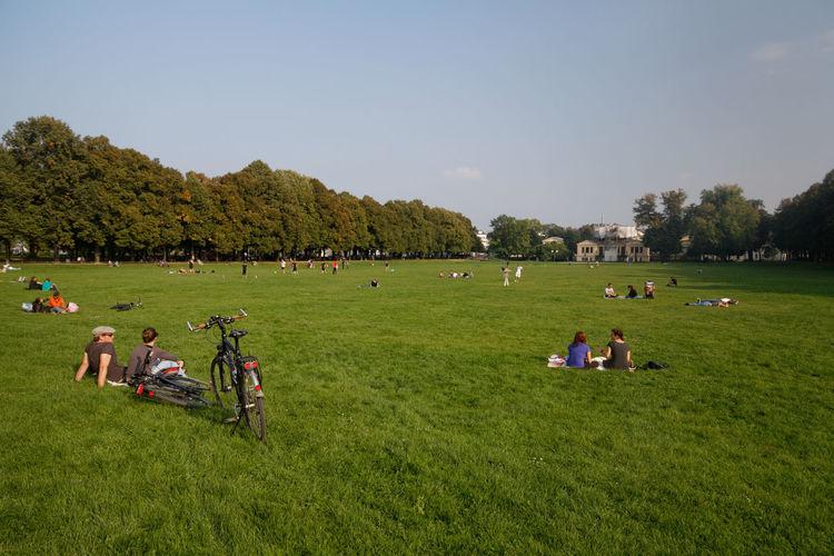 People relaxing on grassy field