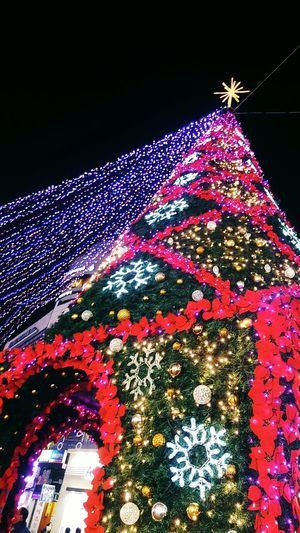크리스마스 Xmas First Eyeem Photo Xmas Tree Xmas2015 Colorful South Korea Night Xmastree