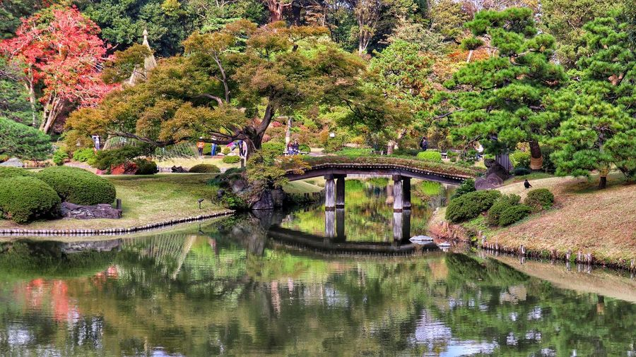Footbridge over lake in park