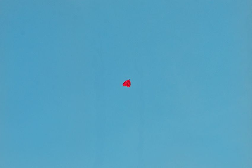 Red Balloon Flying Clear Sky Blue Mid-air Low Angle View Outdoors Sky Summer Nature Beauty In Nature Minimal Minimalism Minimalobsession Minimalist Minimalove Minimalist Photography  Simplicity Landscape Sommergefühle End Plastic Pollution