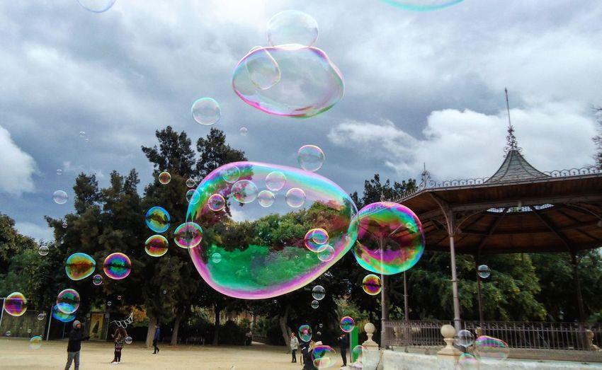 Bubbles Bubble