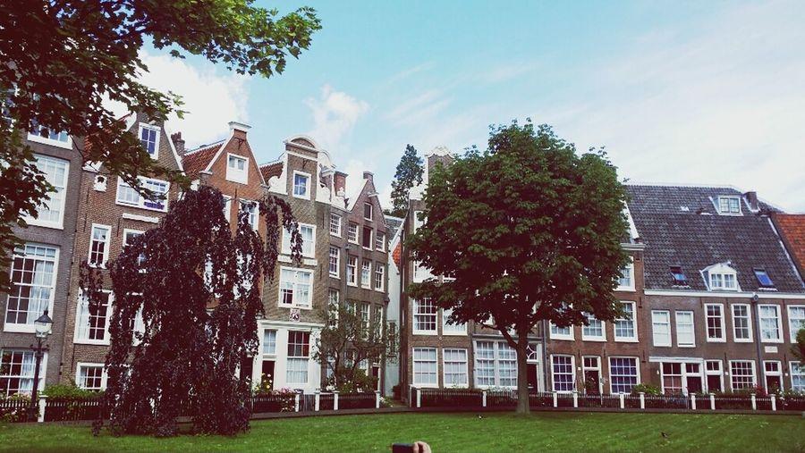 Amsterdam Netherland 건물