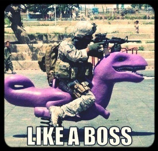 Like A Boss !!
