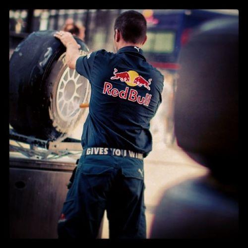 RedBull Redbullteam F1 Formula1 vettel photojournalism