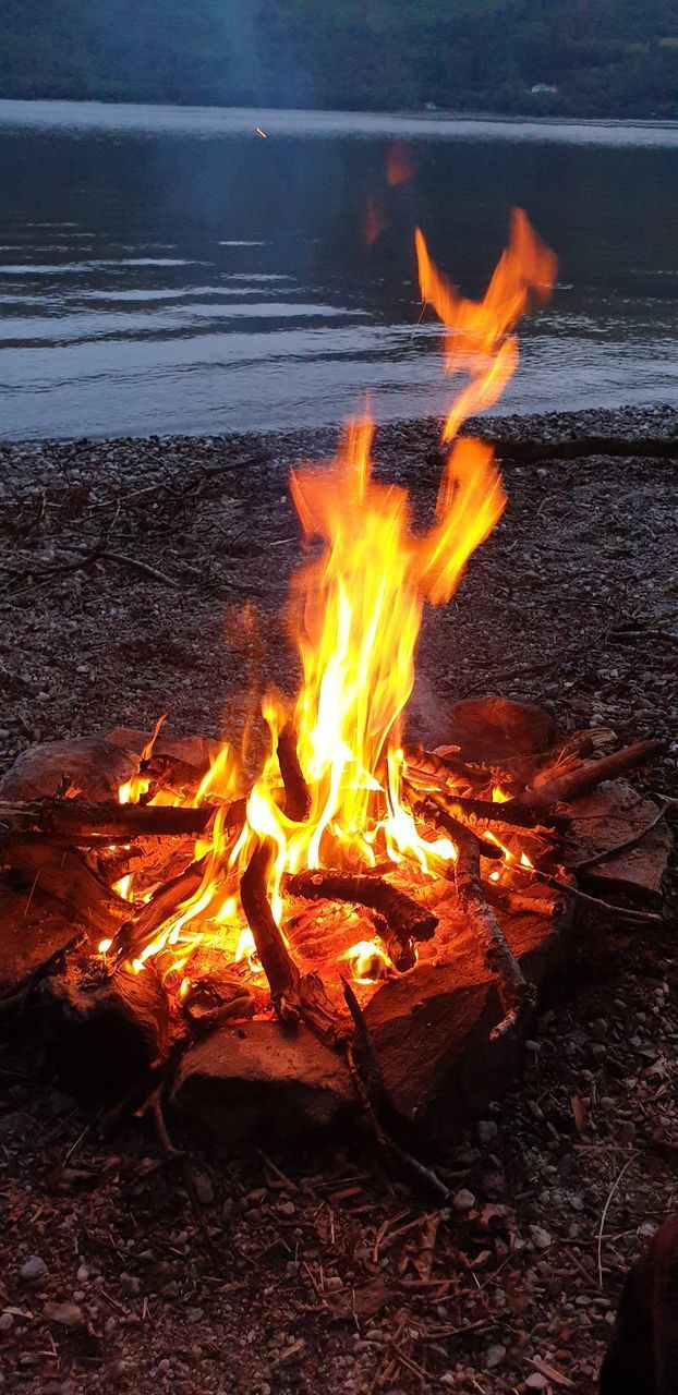 BONFIRE ON WOODEN LOG AT BEACH