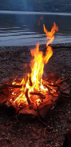 Bonfire on log at beach during sunset