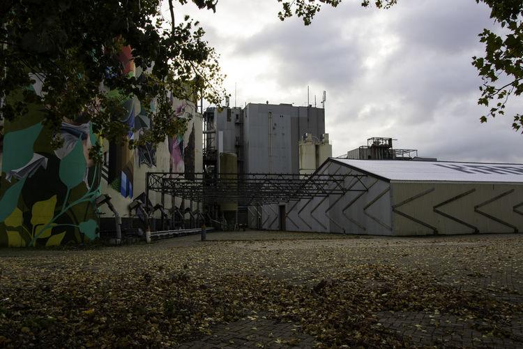 City Colors Of Autumn Creativity Graffiti Cilo Creative Empty Factory Factory Factory Building Factory Photo Graffiti Art Leaves
