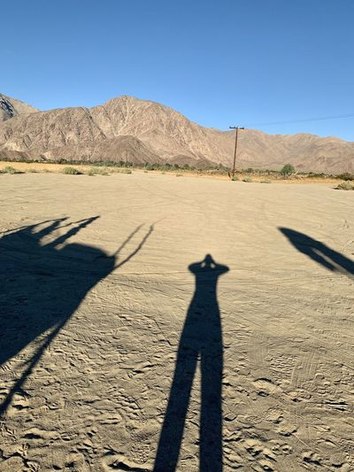 Shadow Desert