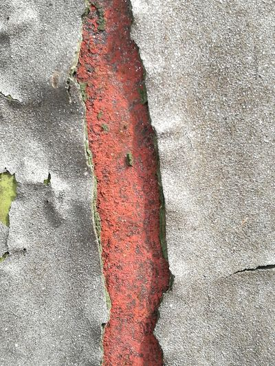 No People Background Sunny Abstract Peeling Off Peeling Paint Rough Texture Outside Red Textured  Full Frame Close-up Painted Rough Peeled Abstract Backgrounds Rugged Uneven