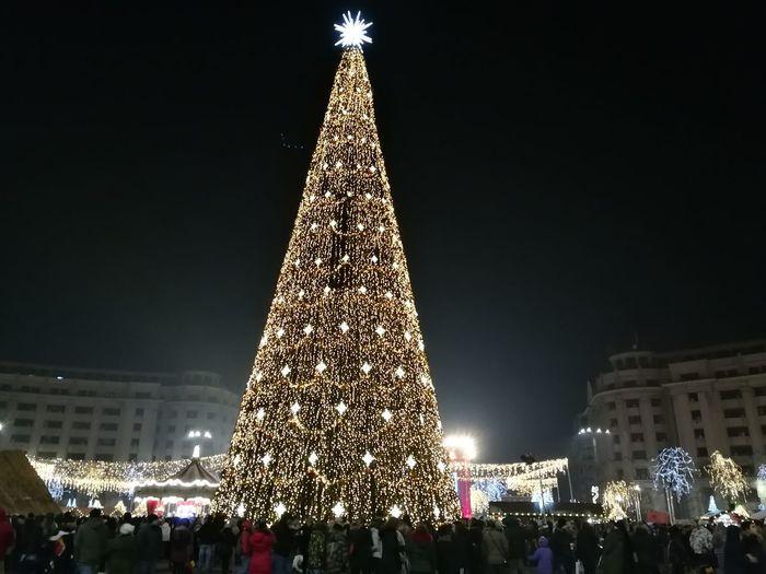 City Tree Christmas Market Illuminated Christmas Decoration Cityscape Winter Christmas Lights Christmas Town Square