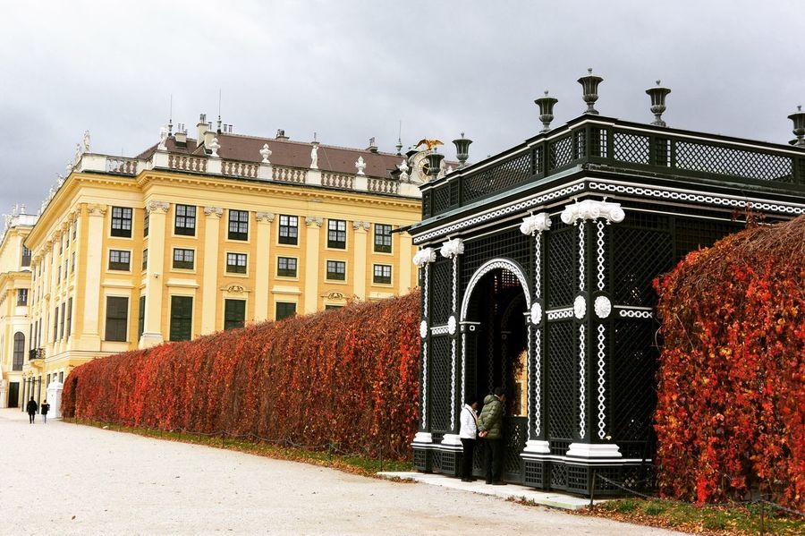 Architecture Building Exterior Built Structure Travel Destinations Sky Outdoors Arch No People Day City Sculpture Sisi Schönbrunn Beauty In Nature Close-up Nature Branch Leaf Walking Road