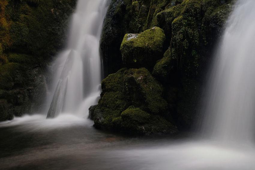 Venford Falls Waterfall Dartmoor EyeEm Selects Venford Falls South Hams Rocks Devon Tree