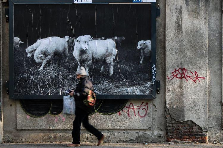 Torinoélamiacittá Turin Italy Torino ❤ Turin Torino Turin, Italy Torino City Torino Digitale Torinoècasamia Turin_city Torinodascoprire Torino, Italy Turin (Italy) Turin❤️ EyeEm Best Shots EyeEm Gallery