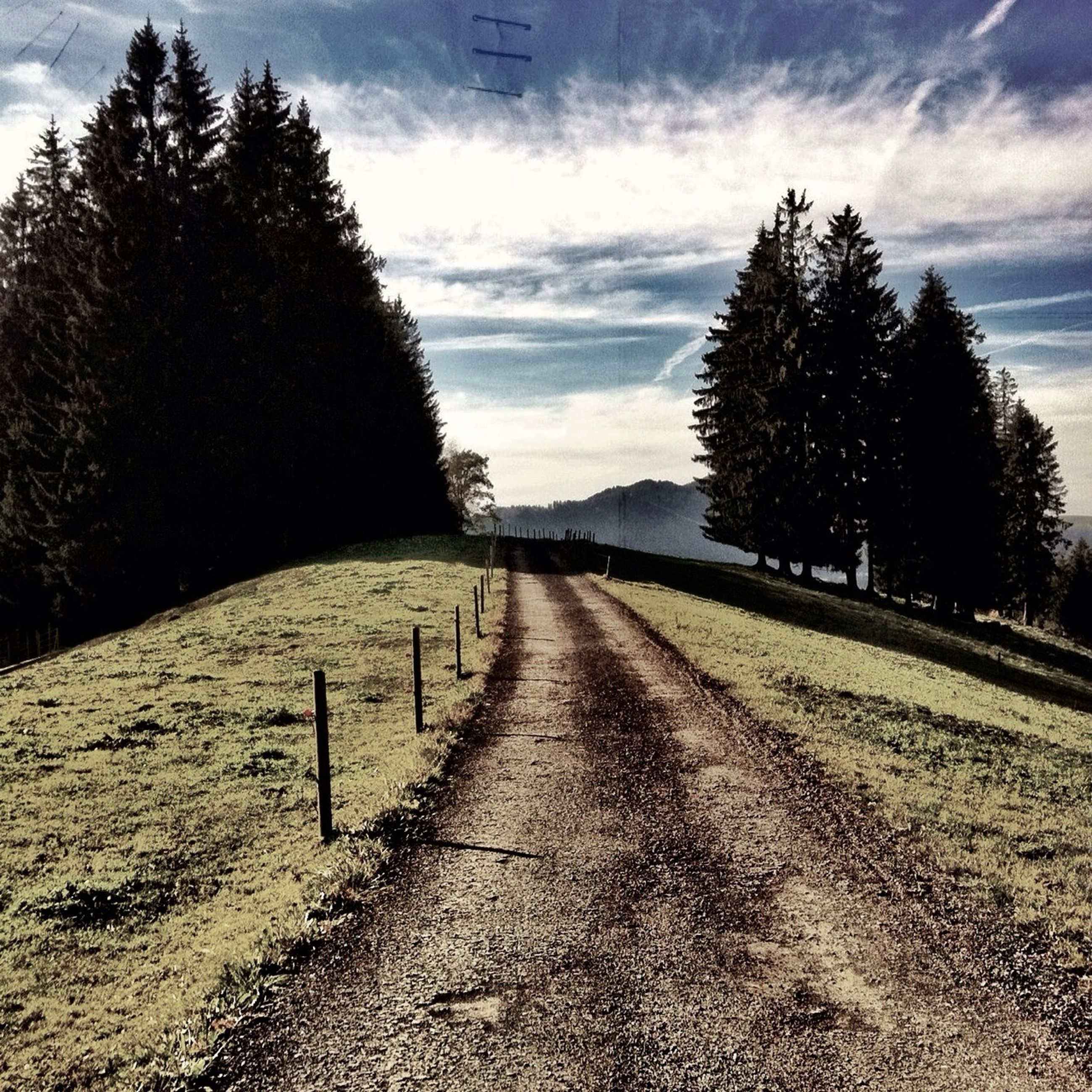 the way forward, tree, sky, diminishing perspective, vanishing point, transportation, road, cloud - sky, tranquility, tranquil scene, empty road, long, empty, bare tree, nature, cloud, no people, outdoors, day, landscape