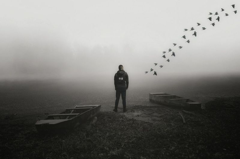 Rear View Of Man Standing In Front Of Birds Flying At Foggy Weather
