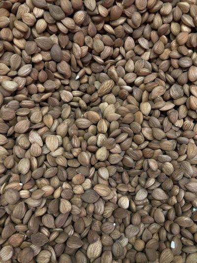 Full frame shot of nuts for sale