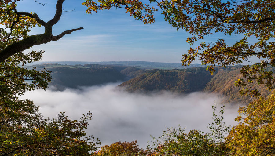 Autumn Autumn Colors Fog Forest Framed Landscape Landscapes With WhiteWall Nebel Panorama Saarland Trees Valley View