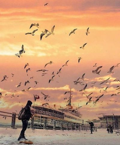 Gün Batımı 🌅 Istanbul Turkey Ne Mutlu Türk'üm Diyene ! Huzur 💕 Aşk♥ Eyem Türkiye The Istanbul Goodnight Hello World Relaxing Iyiaksamlar Amazing Mevsim Kış Blossom Istanbul City istanbul turkiye