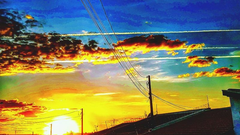 Sunset Sky Cloud - Sky Nature Beauty In Nature Scenics No People Outdoors Backgrounds Animal Wildlife Animals In The Wild Yellow Bird Rural Scene Flying Water Telephone Line Animal Themes Day UnderSea