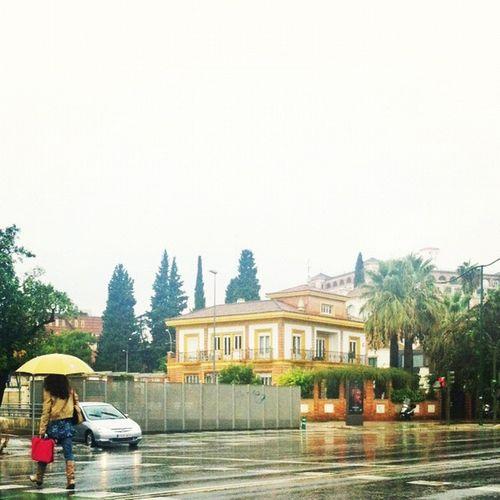 Día lluvioso en #sevilla ... Me encanta la lluvia ;) Statigram Igerssevilla Asiesandalucia Igerandalucia Igerasiesandalucia Powerwhitesky Andalucía Sevilla FotoDelDia Gf_spain Iphone4 Instagood