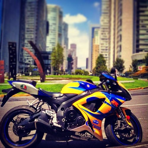 Suzuki Suzukifan Gsxr Mexicocity  coronateam sbk superbike santafe