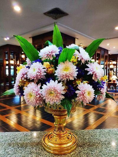 Flower Flower Head Vase Close-up Architecture Garland Flower Arrangement Bunch Of Flowers Flower Shop Florist Valentine Day - Holiday Flower Market Bouquet Orchid Christianity Catholicism