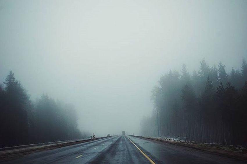 Road Roads Fog Travel Morning Nikon Nikon_photography_ Photo Friday Inmove