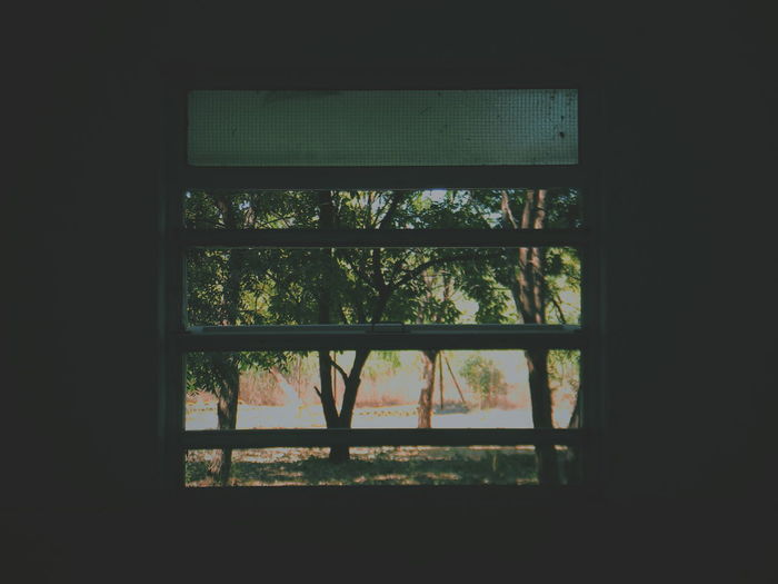 The Window The World Out There Greenery The Essence Of Summer Slits The Only Window On The Wall Treescape