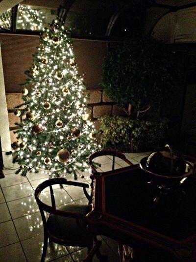 En Paseos Del Bosque Christmas Tree My Home Hollidays