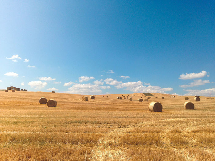 Agriculture Bale  Beauty In Nature Blue Crop  Day Farm Field Harvesting Hay Hay Bale Landscape Nature No People Outdoors Rural Scene Scenics Sky Tranquil Scene Tranquility