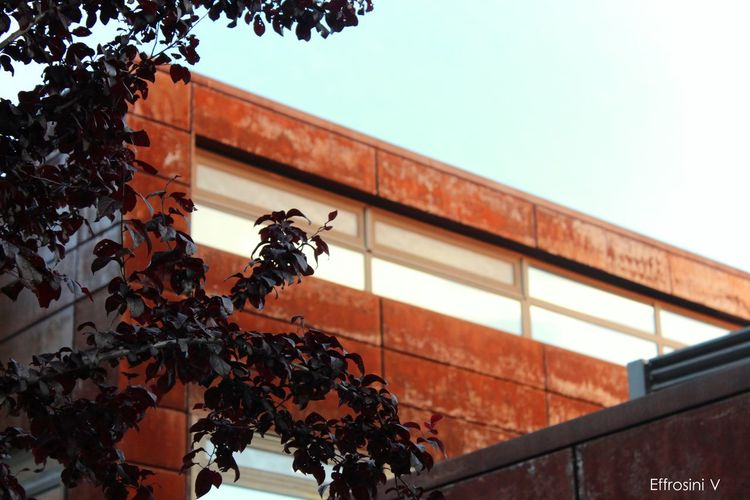Man made rust! American Architecture Built Structure Close-up College Day Farm Low Angle View Minimalism No People Plant Reflection School Sky