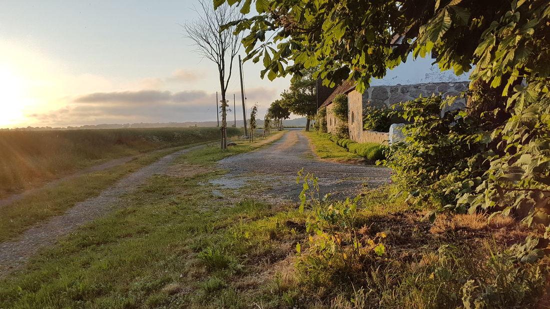 Nach einem Gewitterregen Evening Sky Evening Sun Abendhimmel Farm Bauernhof Weg Way Gärsnäs EyeEm Nature Lover Skåne