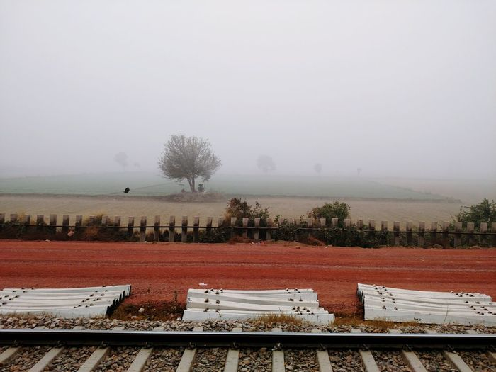 Fog Nature Tree No People Beauty In Nature Outdoors Agriculture Day Sky Green Trees India Indian Plant Freshness Foggy Weather Transportation Travel Winter Fields Nature Beauty In Nature Tree Traveling Traveling By Train Finding New Frontiers Traveling Home For The Holidays