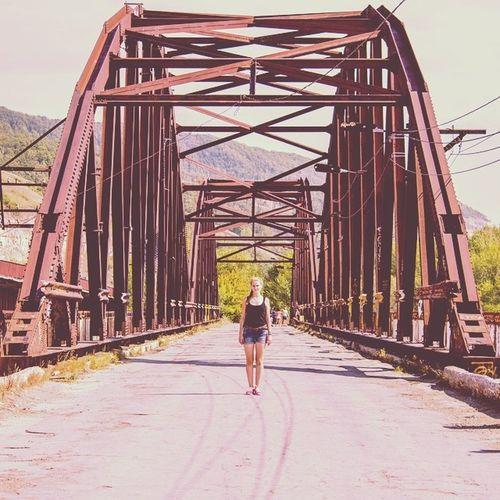 Дорога мост Самара лето