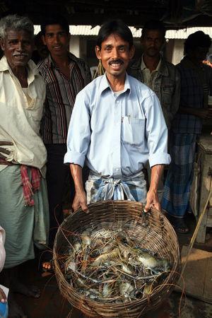 Fish on fish market in Kumrokhali, West Bengal, India on January 12, 2009. ASIA Basket Fish Fishmonger Food Hindu India Kumrokhali Market Men People Person Prawns Row Sale Seafood Selling Shopping Stall Street Vendor West Bengal