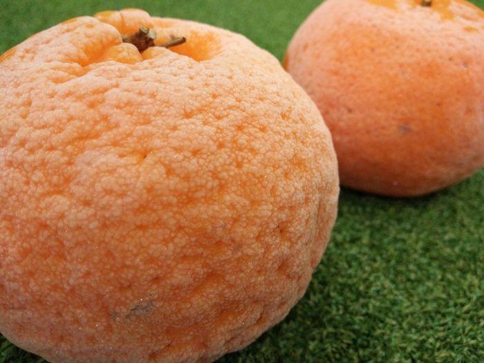 Chineseorange Chinesenewyear 吉祥如意 Everythinggoesperfectly Frozen Orange An Eye For Travel Visual Creativity