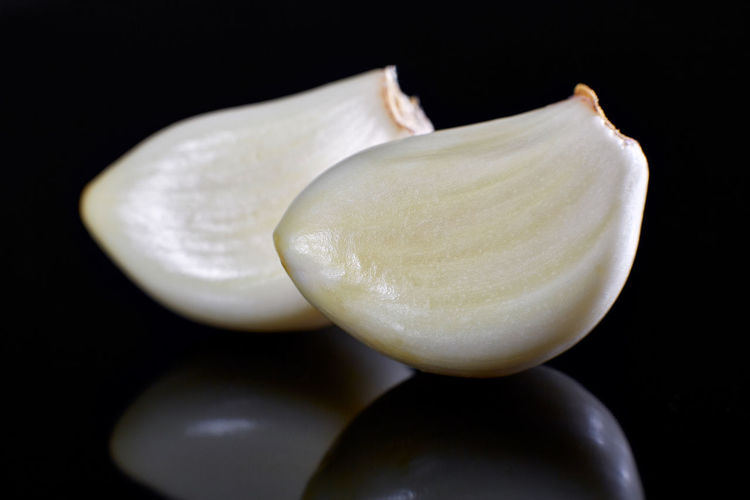 Close-up of shell against black background