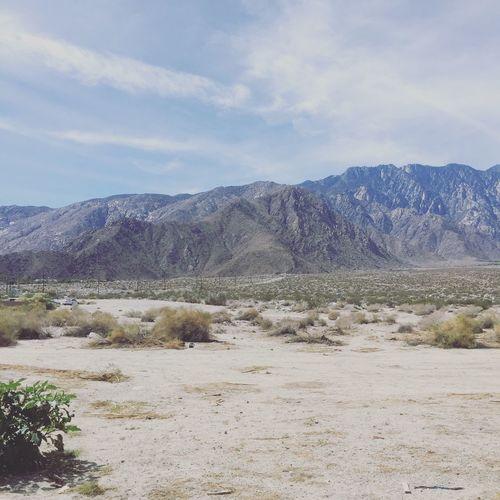 Desert Coachella