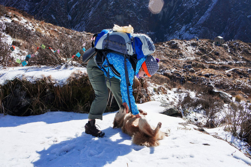 Young woman with  large backpack petting ginger dog on hike along the himalayan ridge in winter