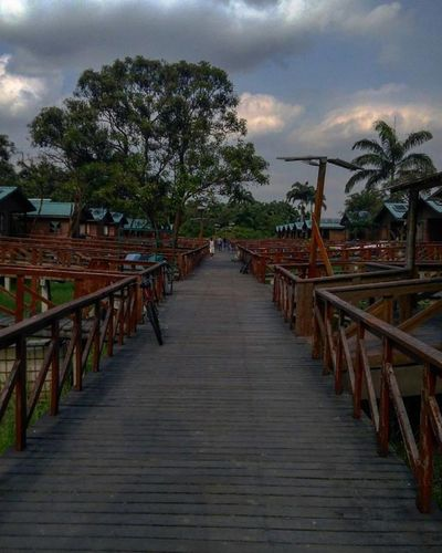 #Island #santay Beauty In Nature Boardwalk Cloud Cloud - Sky Cloudy Day Diminishing Perspective Empty Growth Long Narrow Nature No People Outdoors Sky The Way Forward Tranquil Scene Tranquility Tree Vanishing Point Walkway Wood - Material